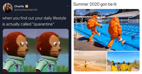 quarantine memes   distract   cabin fever