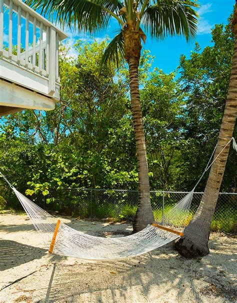 free technology for teachers hammocks plants and bedrooms pea gravel patio free online home decor techhungry us