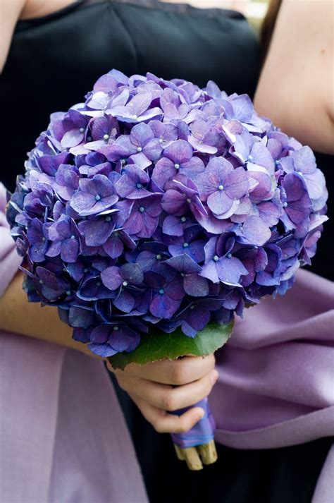 Inexpensive Bridesmaid Bouquets by Best 25 Purple Hydrangea Bouquet Ideas On