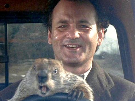 bill murray groundhog day xavier in punxsutawney spirit bill murray reappears at