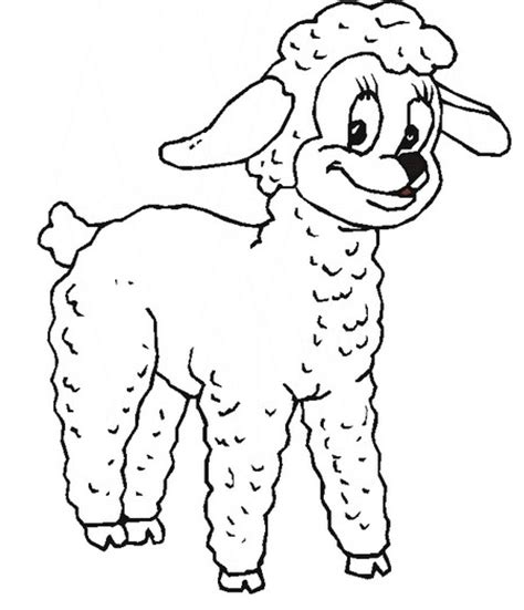 small sheep coloring page jumping sheep coloring page sketch coloring page