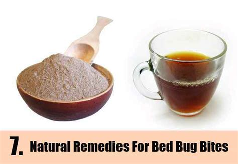 natural remedies   rid  bed bugs    rid  bed bugs natural home