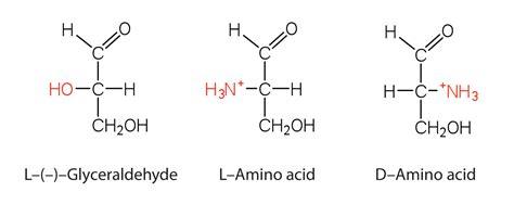 L Hi Protein Basic Formula Properties Of Amino Acids