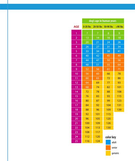 what age is considered a puppy age in human years chart free