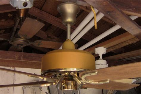ceiling fans store ceiling fan store 28 images many choices can stop you