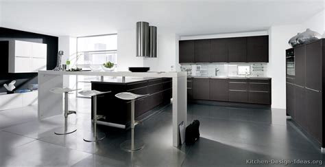 Home Depot Interiors pictures of kitchens modern dark wood kitchens