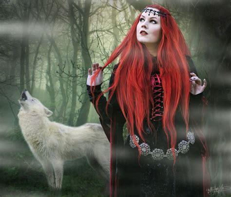 images  white wolves  pinterest  wild