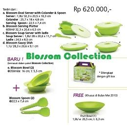 Special Blossom Collection Tupperware Termurah 17 best images about tupperware indonesia on