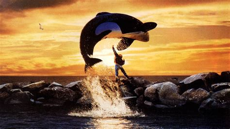 jump free the free willy