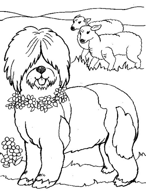 sheep dog coloring page sheepdog coloring pages coloring pages