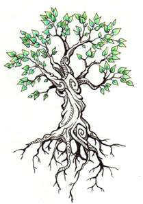 drawings of tree 30 beautiful tree drawings and creative works from top