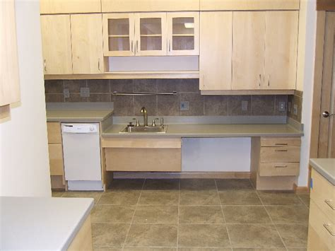 kitchen the wheelchair accessible sink and work aream