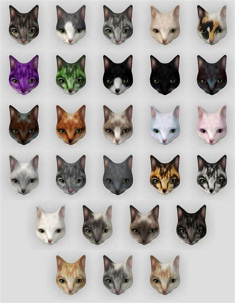 Colors Cat arcade cat fur colors for more fd updates follow me