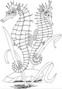 underwater coloring pages 7 underwater world coloring pages