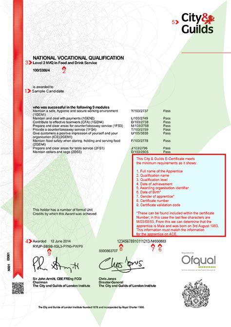 city guilds e certificate ace website