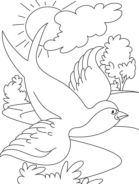 coloring page of birds flying swallow bird flying coloring page download free swallow