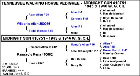 printable version of midnight sun draft tennessee walking horse midnight sun 410751 home page