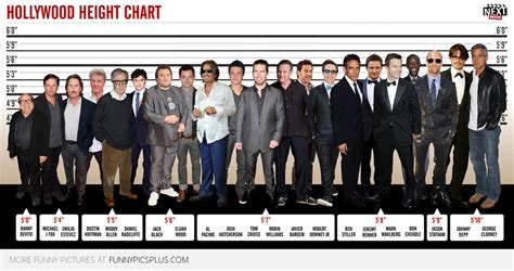 picture height heights of pictures