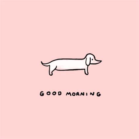 good morning gifs   Tumblr