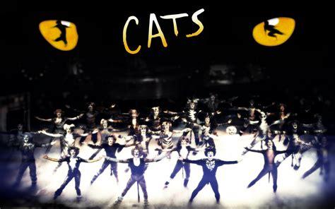 cats musical naix write s nov 25 2010