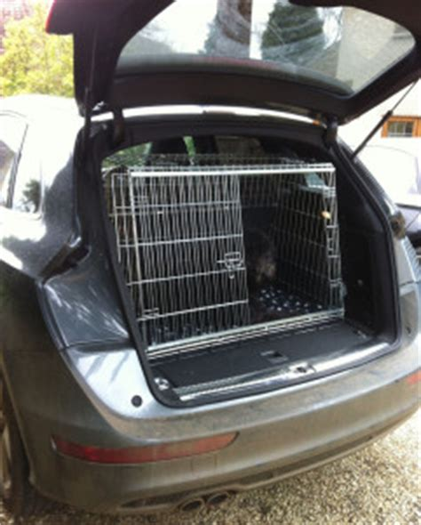 rottweiler crate rottweiler car trips rottweiler puppies for sale