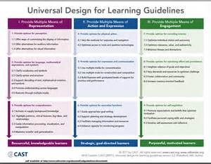 evo training cast udl guidelines