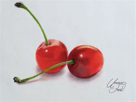 colored cherries cherry shaded fruit pencil and in color