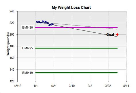 weight loss charts find word templates