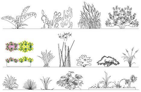 vaso fiori dwg fioriere e aiuole disegni fioriere dwg 2