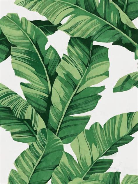 leaf pattern artwork tropical banana leaves art print by catyarte worldwide