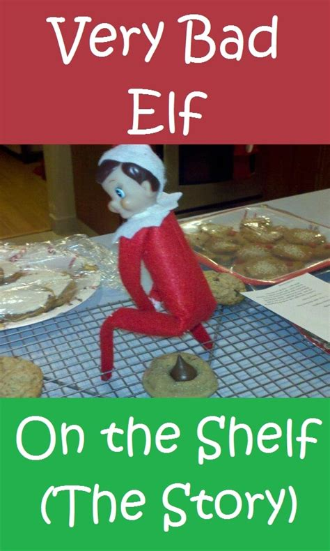 On The Shelf Story by Bad On The Shelf The Story Photos Of A