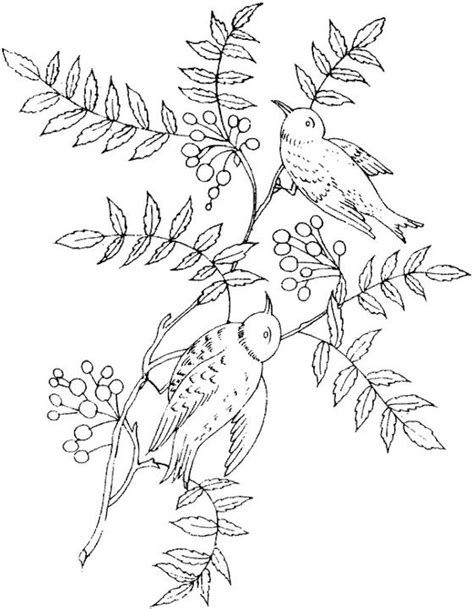 printable coloring pages for adults birds bird coloring page