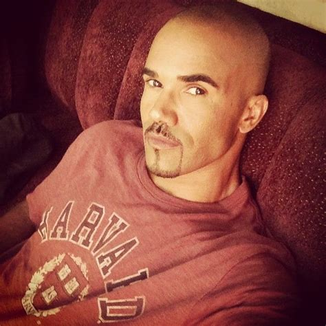 Does A Restraining Order Go On Your Criminal Record 205 Best Images About Shemar On