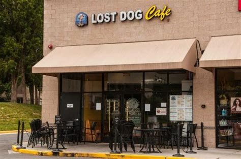 lost cafe mclean lost cafe mclean picture of lost cafe mclean tripadvisor