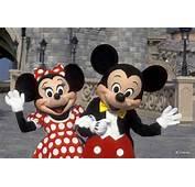 Pics Photos  Minnie And Mickey At Disneyland