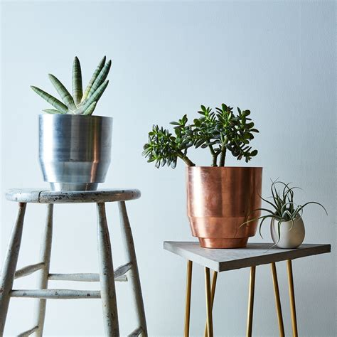 wall mount planter spun planter wall mount on food52