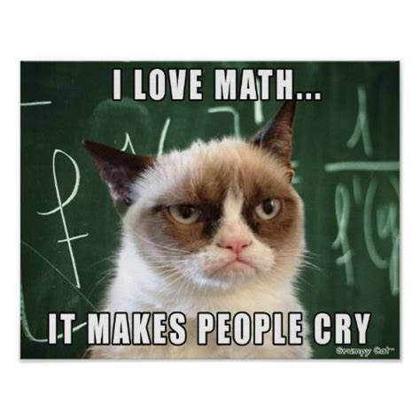 Grumpy Cat Meme Love - grumpy cat poster i love math it makes people cry poster teaching so true and poster