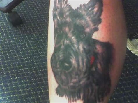 scottish terrier tattoo design 1000 images about ideas on scottish