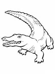 crocodile coloring pages free printable crocodile coloring pages for