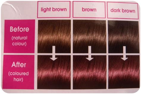 loreal hair color chart on my hair story l oreal creme gloss review