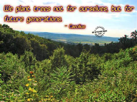 Quote About Planting Trees For Future Generations