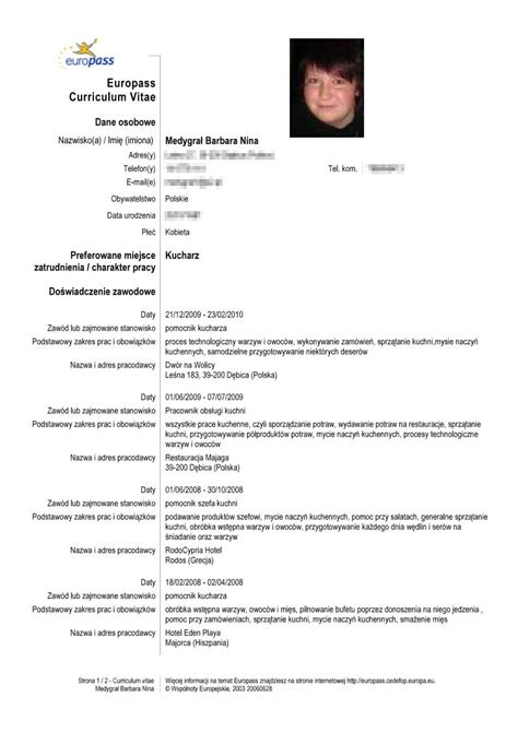 curriculum vitae model in model cv more exles