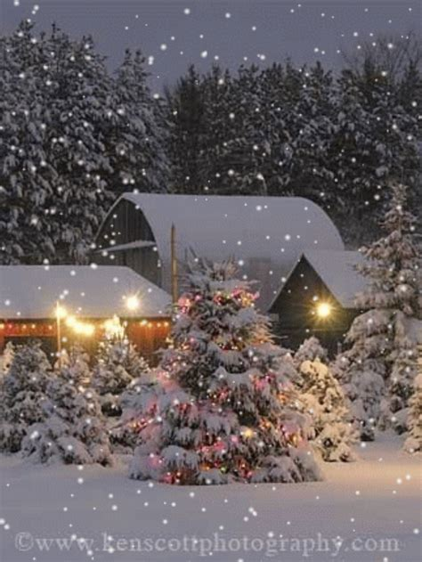 christmas lights that look like best 28 lights that look like snow falling outdoor
