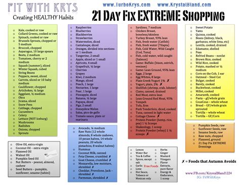printable shopping list for 21 day fix 21 day fix extreme shopping list fit and fabulous