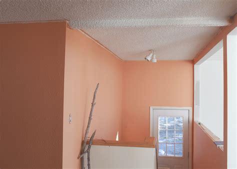 choosing paint is nesting