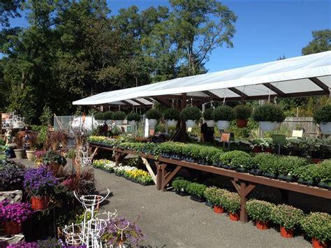 Garden Center Jericho Turnpike Nursery Acer S Florist Garden Center