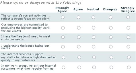 likert scale questions template likert scale template