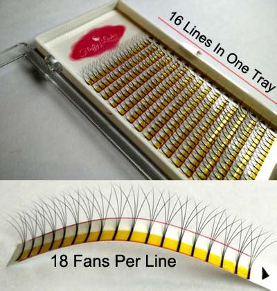pre fanned volume lashes buy 4d pre fanned volume eyelash extension free delivery