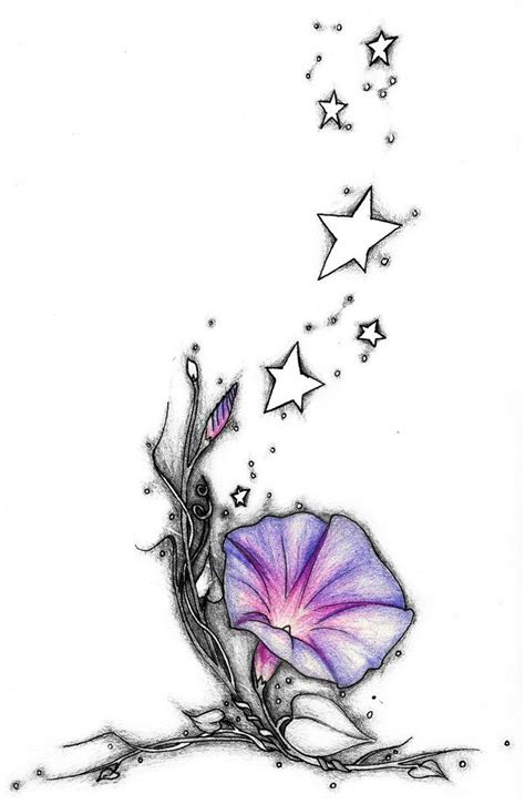 morning glory tattoo designs morning ideas