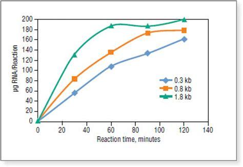 Rna Power 2 5g hiscribe t7 high yield rna synthesis kit neb